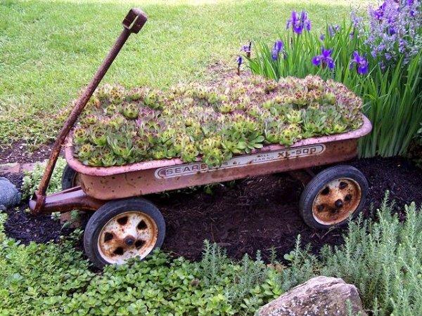 Myra Glandon wheels away her succulent garden in a wagon