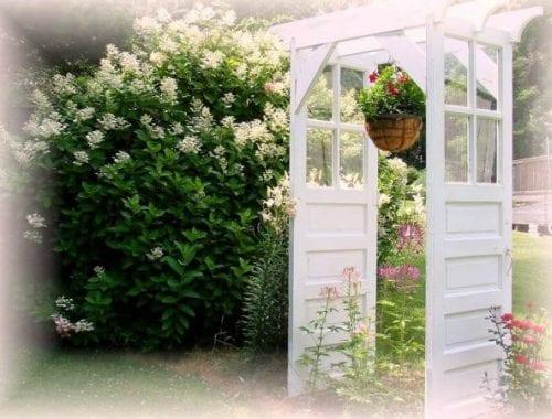 Old Doors And Windows Flea Market Gardening