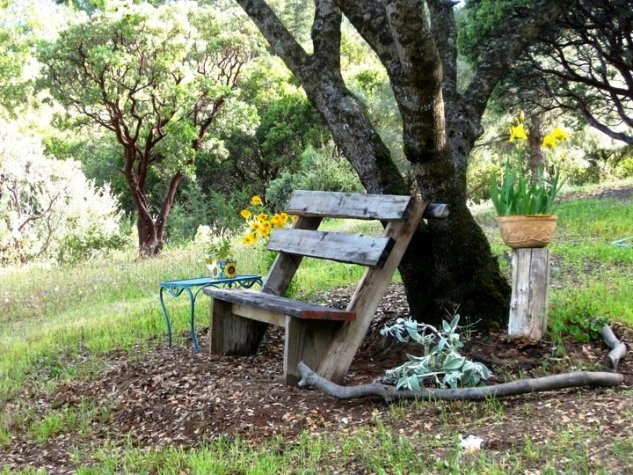 Sue Langley's rustic bench, after