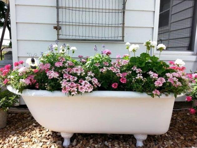 Tammy Lack's stunningly beautiful tub planter, now