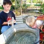 Blondeponders Garden And Duck Tales 2