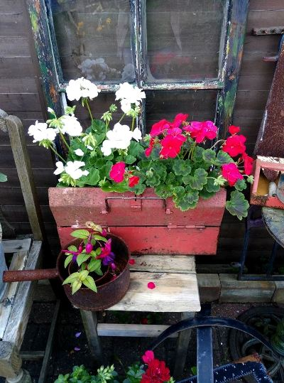 Canan Oguz-Brown's planter box