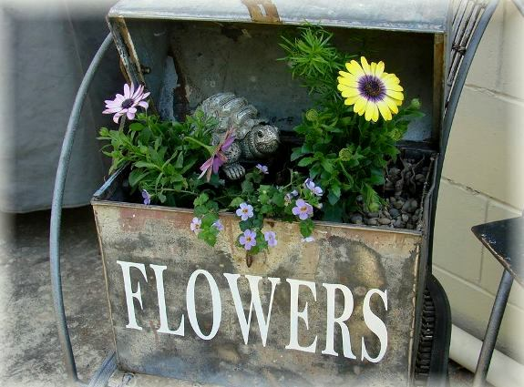 Jeanne Sammons planted her tool boxwith Bacopa, asparagus fern, osteospermum, in two colors